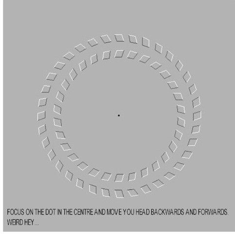Cercles gris